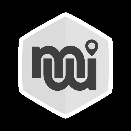 logo mviewer